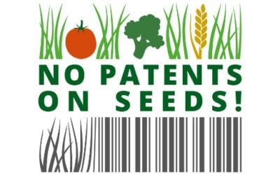 no patent on seeds!