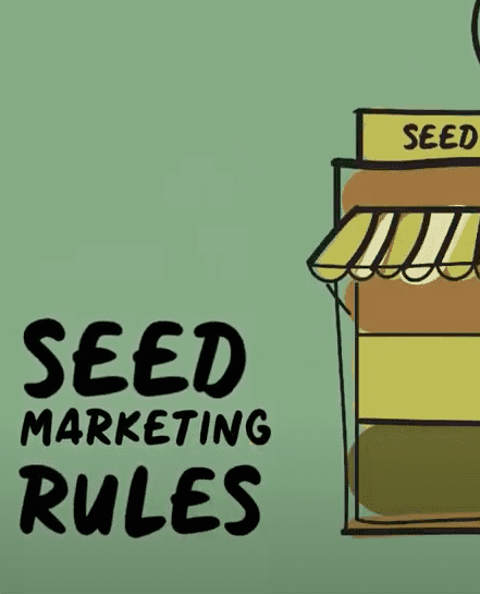 Dynaversity video scribing #4: Seed marketing rules