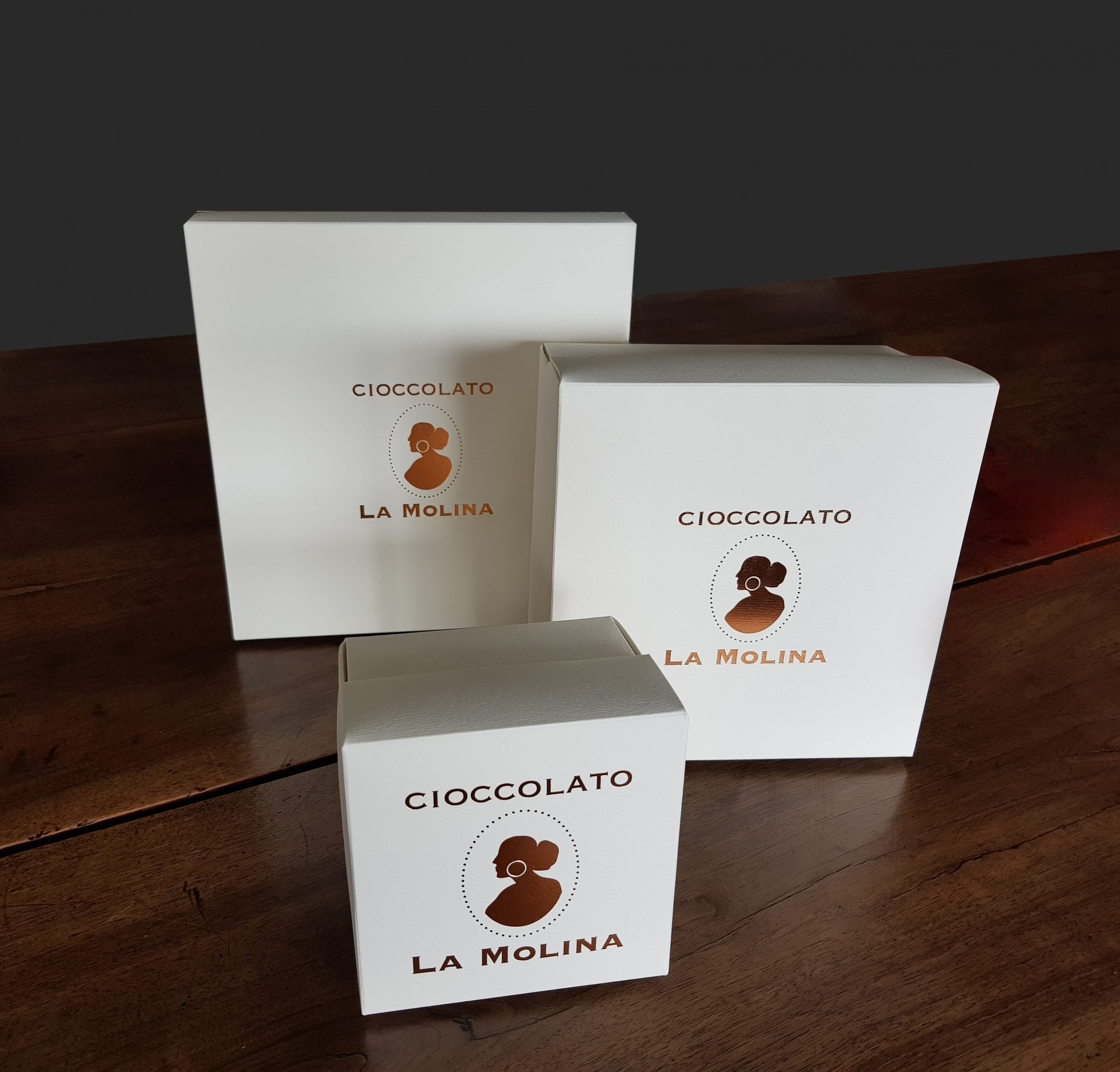 gift box with logo in copper foil (small)